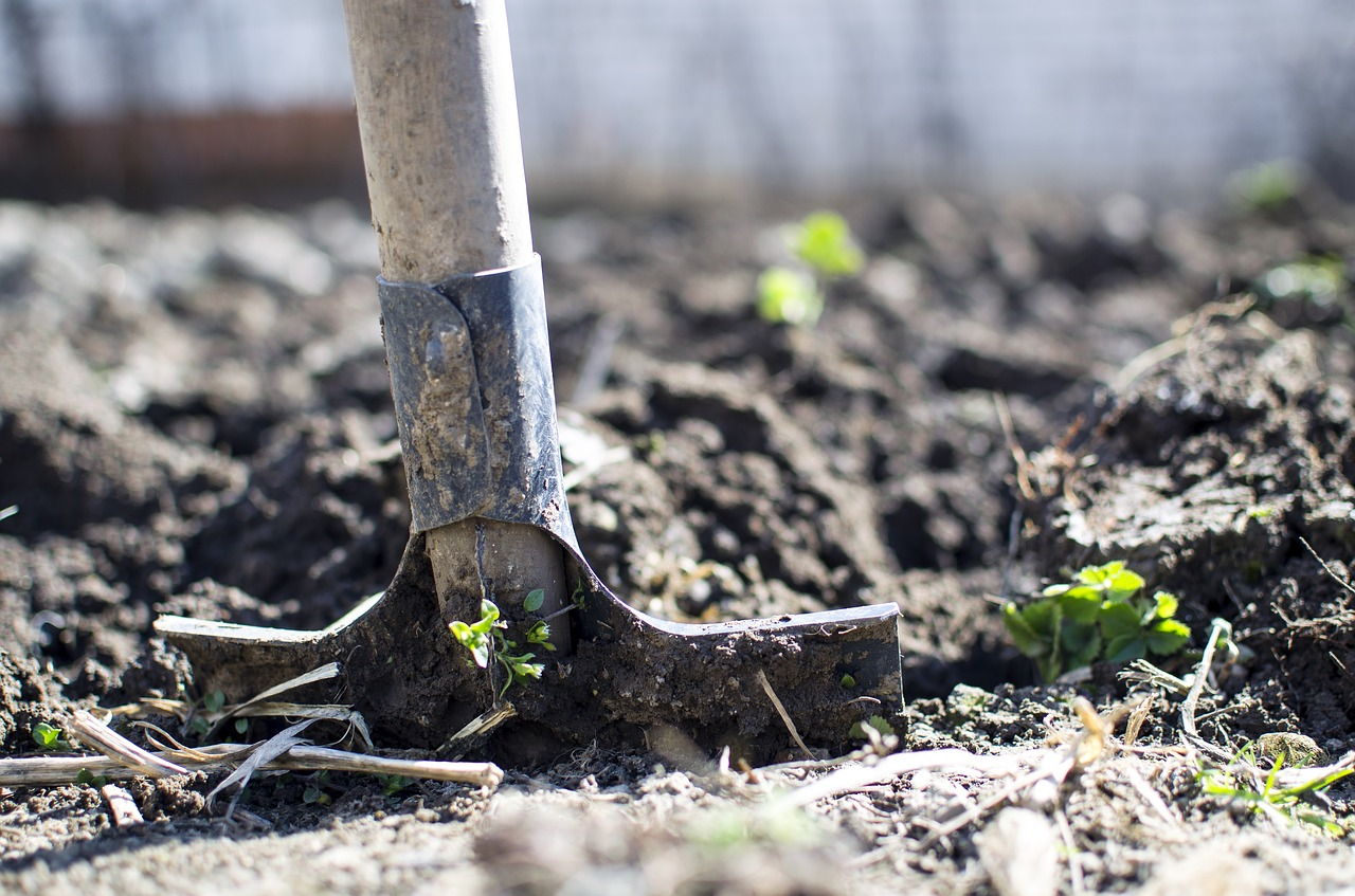 Digging for old blog posts hurts your SEO