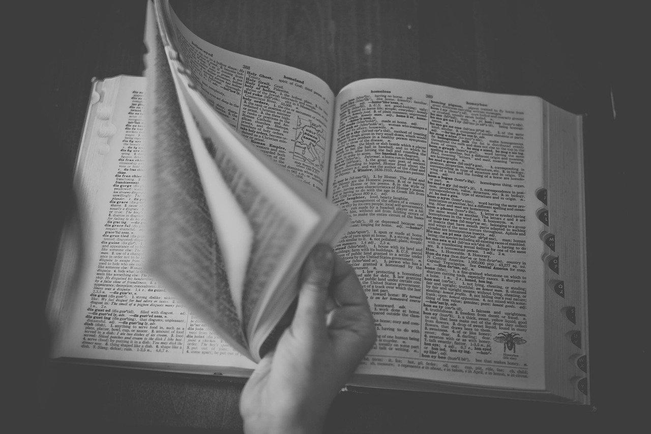 Dictionary Recognizes They as Singular Pronoun