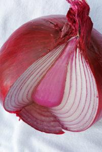 Legal Blogging Onion Metaphor